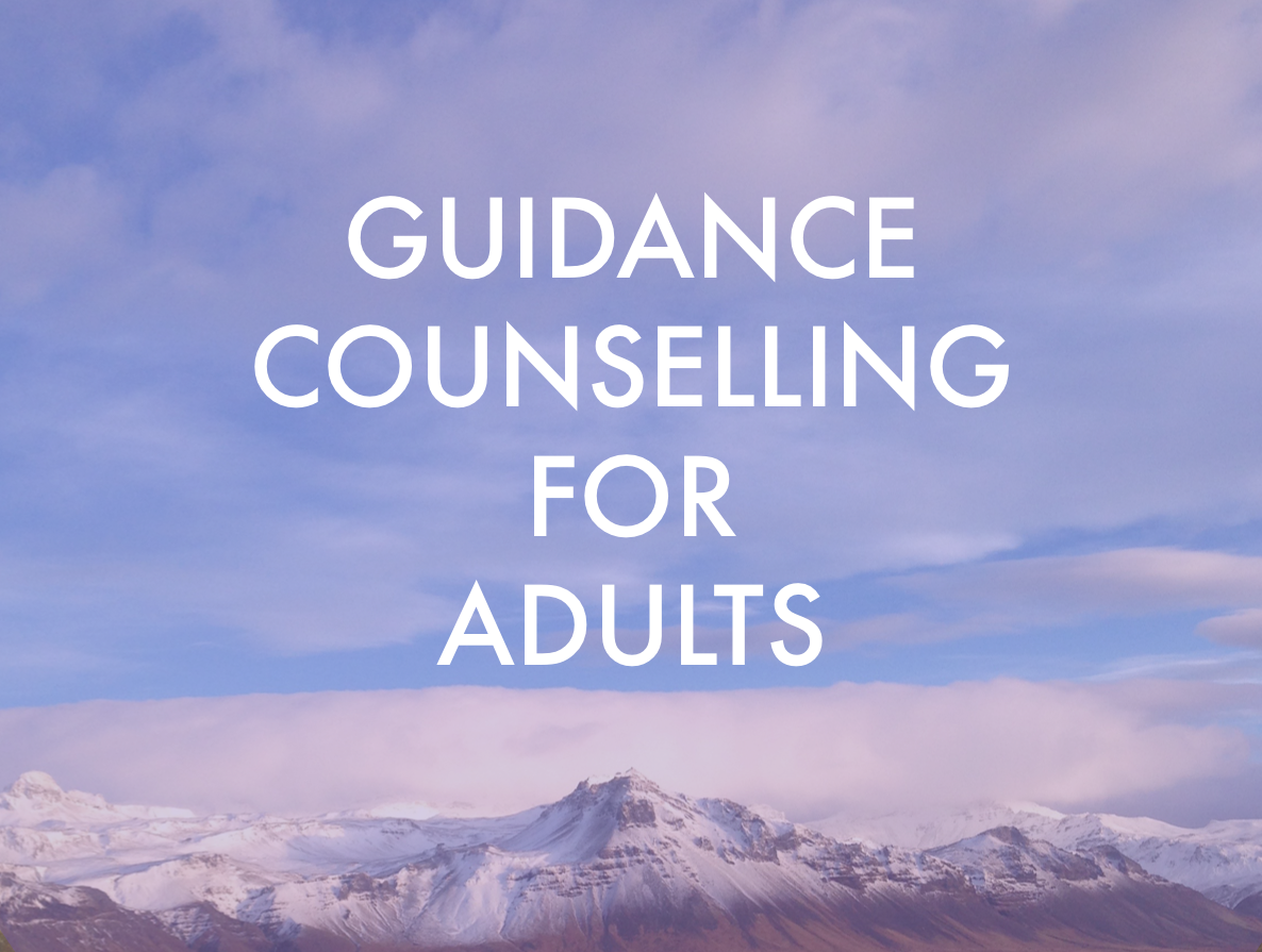 Guidance Counselling for Adults - Kathryn Meisner